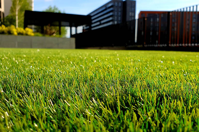10 reasons to choose artificial grass for your garden