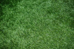 Things to know before installing artificial turf in your home