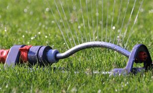 9 quick tips for garden water management