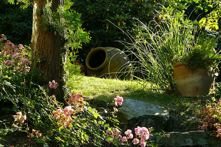 How to transform your neglected garden into an outdoor oasis
