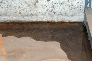 How to deal with basement flooding and moisture